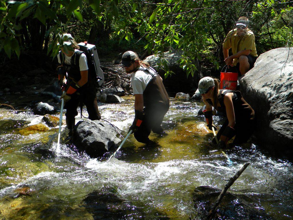 BURP Crew water quality monitoring